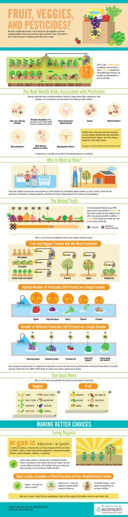 Pesticides Organic Food Infographic